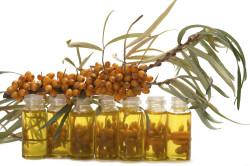 Польза облепихового масла при болезни желудка